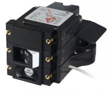 ELCI C-Series 120VAC 30A Double Pole 30mA IP FR