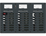 Panel 120VAC8pos with Mains DC16pos (replaces 8084B)