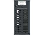 Panel 230VAC 10pos with Main Voltmeter (replaces 8588B)