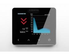 PICO battery monitor, Standalone | Silver